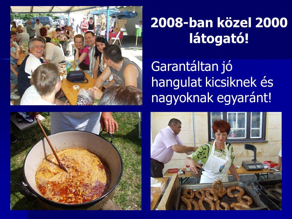 2008-ban közel 2000 látogató! Garantáltan jó hangulat kicsiknek és nagyoknak egyaránt!
