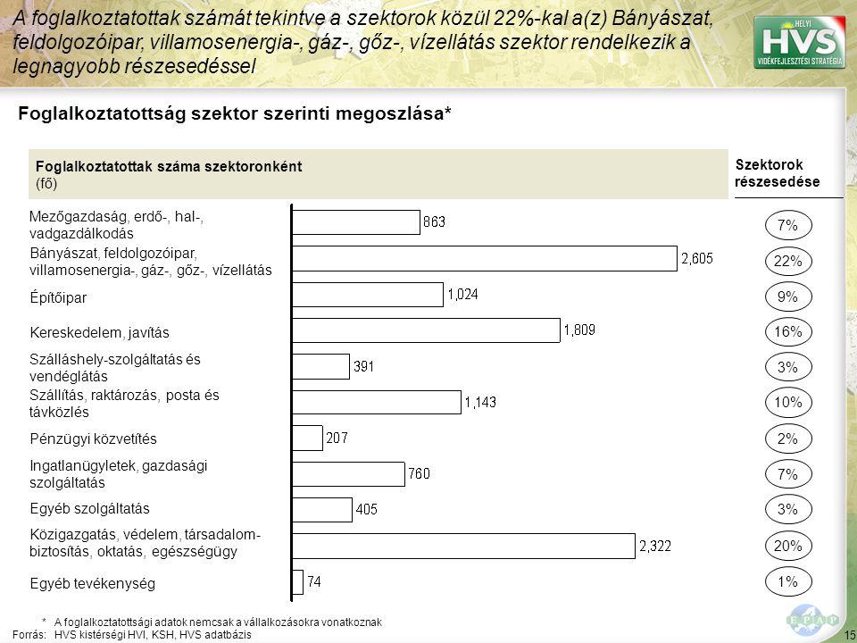 15 Foglalkoztatottság szektor szerinti megoszlása* A foglalkoztatottak számát tekintve a szektorok közül 22%-kal a(z) Bányászat, feldolgozóipar, villa