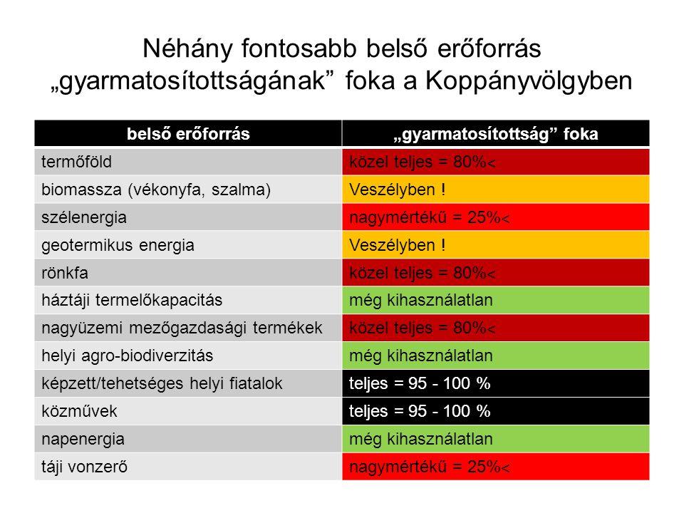 """Néhány fontosabb belső erőforrás """"gyarmatosítottságának"""" foka a Koppányvölgyben belső erőforrás""""gyarmatosítottság"""" foka termőföld közel teljes = 80% ˂"""