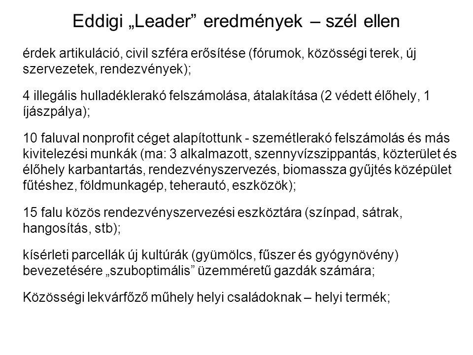 """Eddigi """"Leader"""" eredmények – szél ellen érdek artikuláció, civil szféra erősítése (fórumok, közösségi terek, új szervezetek, rendezvények); 4 illegáli"""