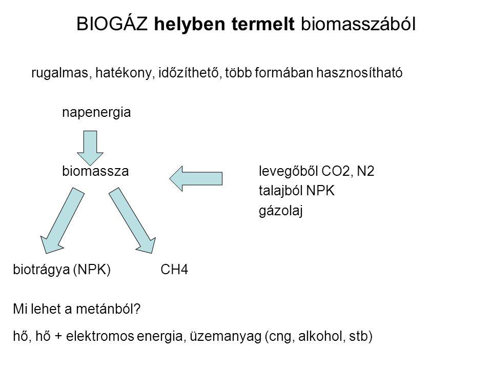BIOGÁZ helyben termelt biomasszából rugalmas, hatékony, időzíthető, több formában hasznosítható napenergia biomassza levegőből CO2, N2 talajból NPK gá
