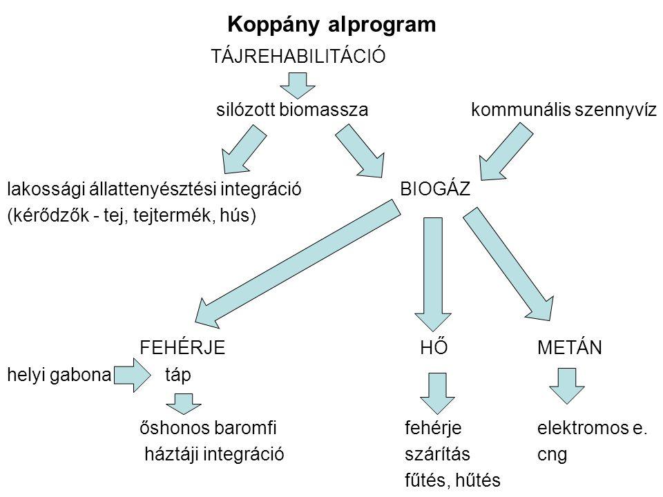 Koppány alprogram TÁJREHABILITÁCIÓ silózott biomasszakommunális szennyvíz lakossági állattenyésztési integráció BIOGÁZ (kérődzők - tej, tejtermék, hús