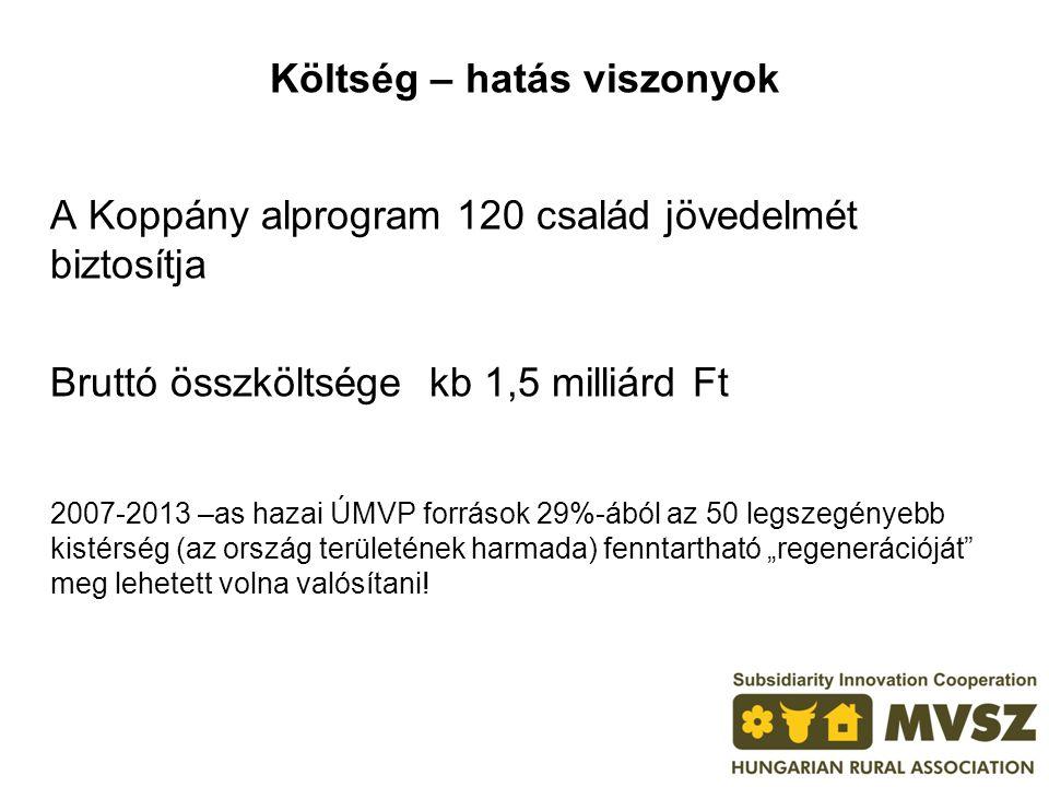 Költség – hatás viszonyok A Koppány alprogram 120 család jövedelmét biztosítja Bruttó összköltsége kb 1,5 milliárd Ft 2007-2013 –as hazai ÚMVP forráso
