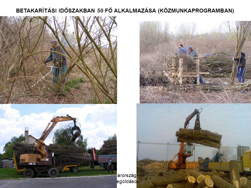 WWF Magyarország - Komplex megoldások BETAKARÍTÁSI IDŐSZAKBAN 50 FŐ ALKALMAZÁSA (KÖZMUNKAPROGRAMBAN)