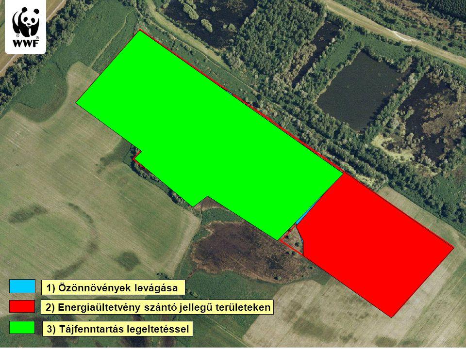 WWF Magyarország - Komplex megoldások Biomass cutting Energy useful plantation 3) Tájfenntartás legeltetéssel 1) Özönnövények levágása 2) Energiaültet