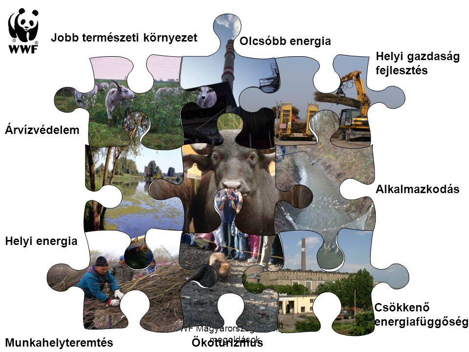 WWF Magyarország - Komplex megoldások Jobb természeti környezet Csökkenő energiafüggőség Helyi gazdaság fejlesztés Olcsóbb energia Ökoturizmus Árvízvé