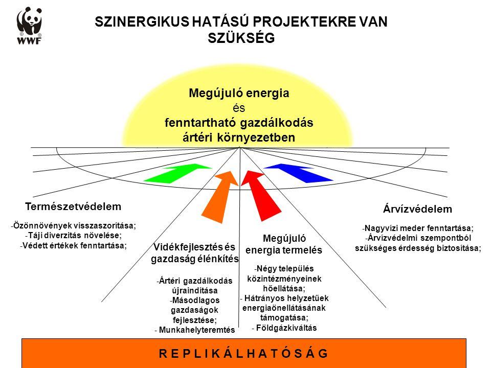 WWF Magyarország - Komplex megoldások SZINERGIKUS HATÁSÚ PROJEKTEKRE VAN SZÜKSÉG Megújuló energia termelés -Négy település közintézményeinek hőellátás