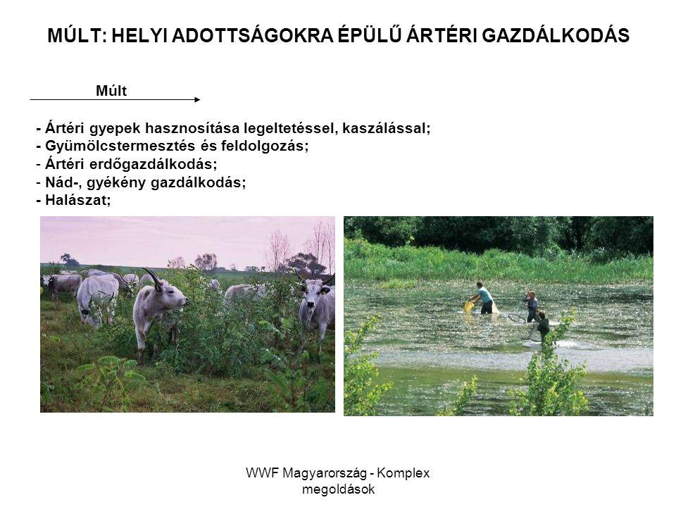 WWF Magyarország - Komplex megoldások MÚLT: HELYI ADOTTSÁGOKRA ÉPÜLŰ ÁRTÉRI GAZDÁLKODÁS Múlt - Ártéri gyepek hasznosítása legeltetéssel, kaszálással;