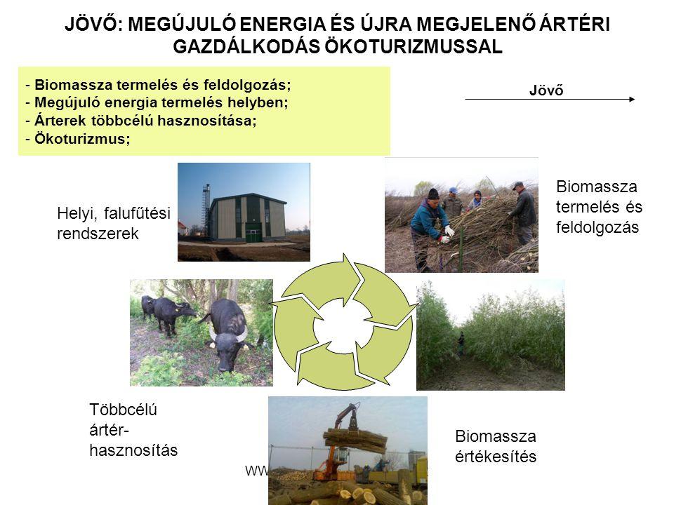 WWF Magyarország - Komplex megoldások JÖVŐ: MEGÚJULÓ ENERGIA ÉS ÚJRA MEGJELENŐ ÁRTÉRI GAZDÁLKODÁS ÖKOTURIZMUSSAL Jövő - Biomassza termelés és feldolgo