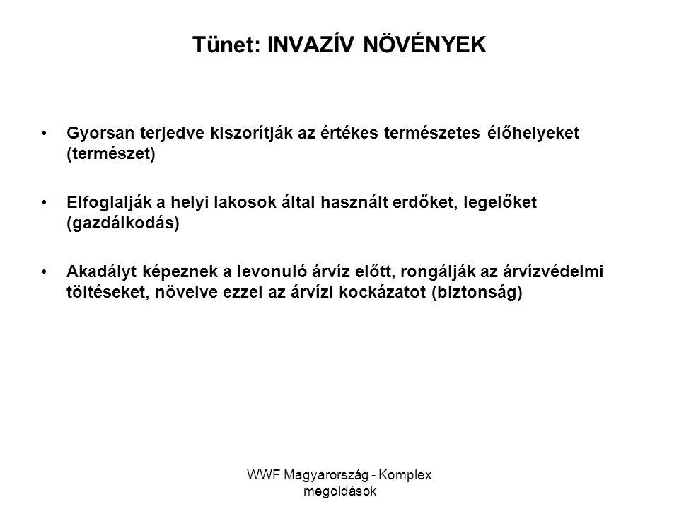 WWF Magyarország - Komplex megoldások Tünet: INVAZÍV NÖVÉNYEK Gyorsan terjedve kiszorítják az értékes természetes élőhelyeket (természet) Elfoglalják