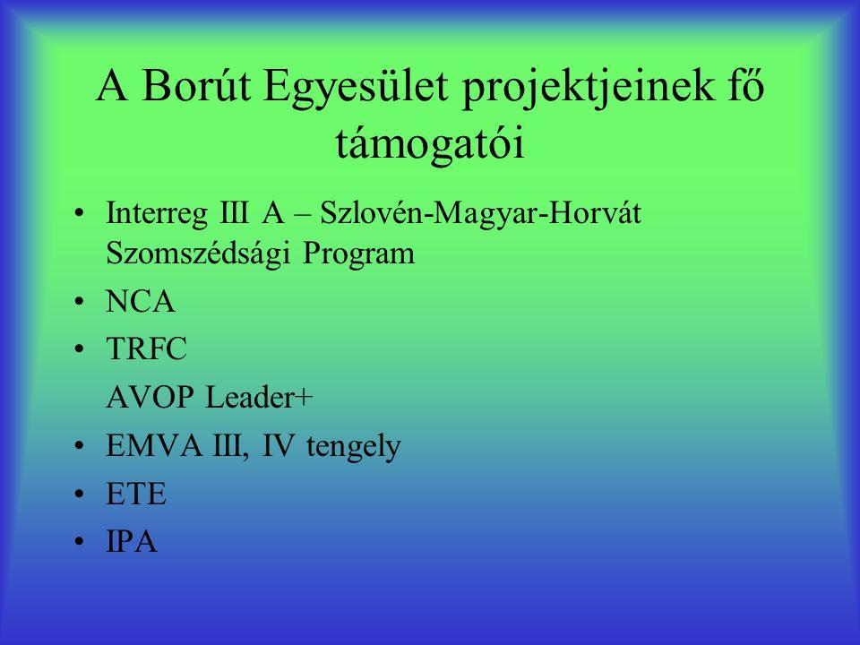 A Borút Egyesület projektjeinek fő támogatói Interreg III A – Szlovén-Magyar-Horvát Szomszédsági Program NCA TRFC AVOP Leader+ EMVA III, IV tengely ETE IPA
