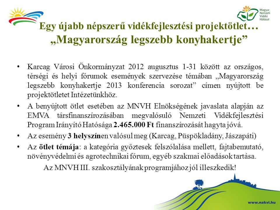 """Egy újabb népszerű vidékfejlesztési projektötlet … """"Magyarország legszebb konyhakertje"""" Karcag Városi Önkormányzat 2012 augusztus 1-31 között az orszá"""