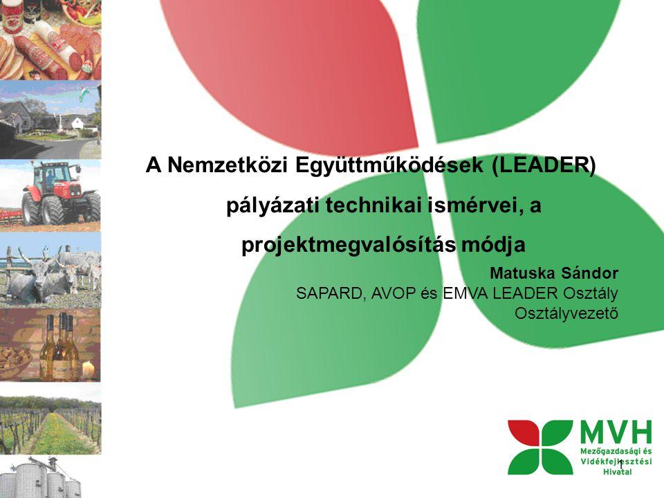 A Nemzetközi Együttműködések (LEADER) pályázati technikai ismérvei, a projektmegvalósítás módja 1 Matuska Sándor SAPARD, AVOP és EMVA LEADER Osztály Osztályvezető
