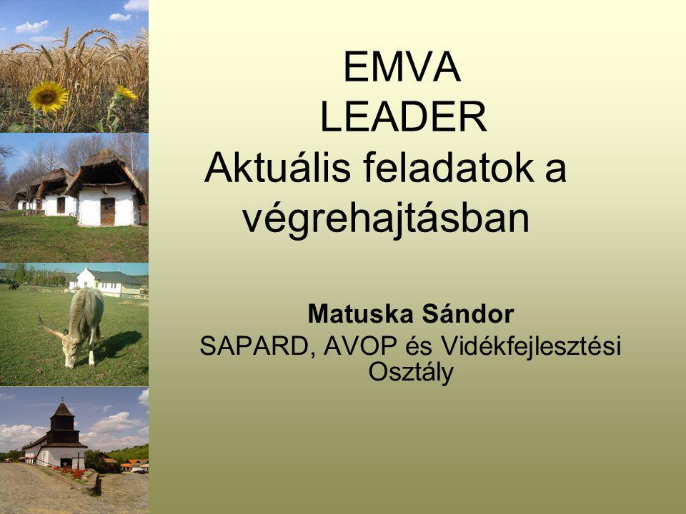EMVA LEADER Aktuális feladatok a végrehajtásban Matuska Sándor SAPARD, AVOP és Vidékfejlesztési Osztály