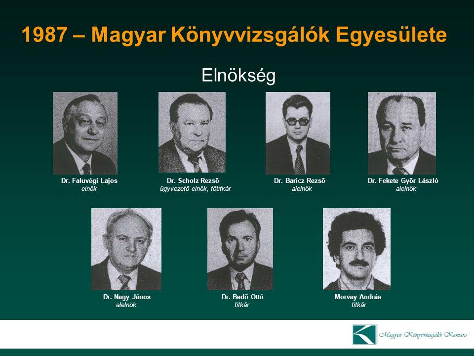 2007 – Magyar Könyvvizsgálói Kamara Oktatási bizottság Darancó Károly Dr.