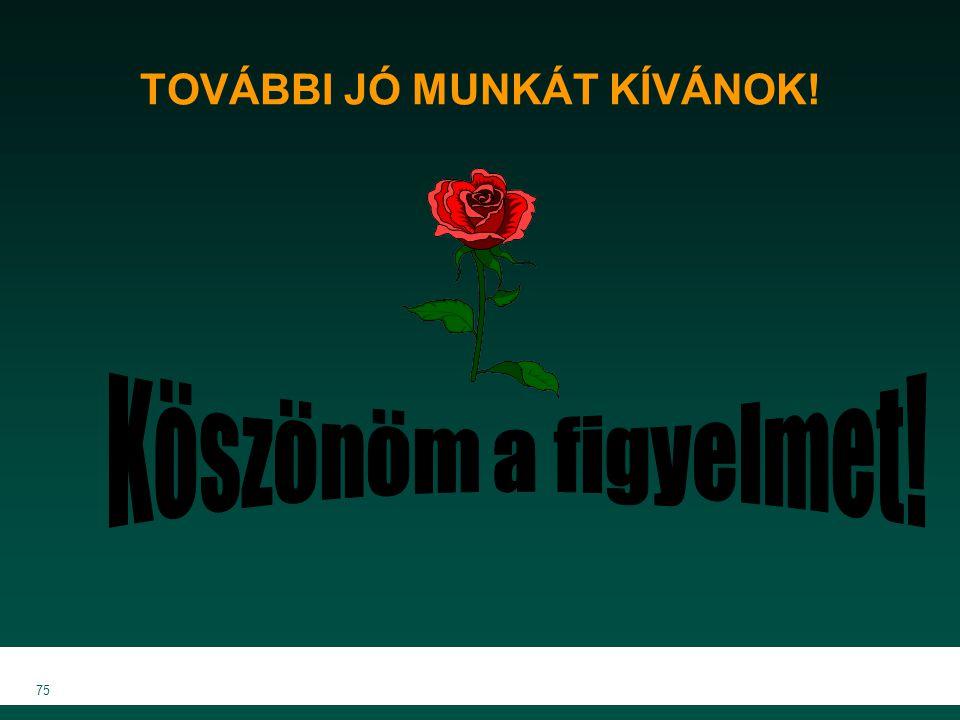 MKVK MEB 2007 75 TOVÁBBI JÓ MUNKÁT KÍVÁNOK!