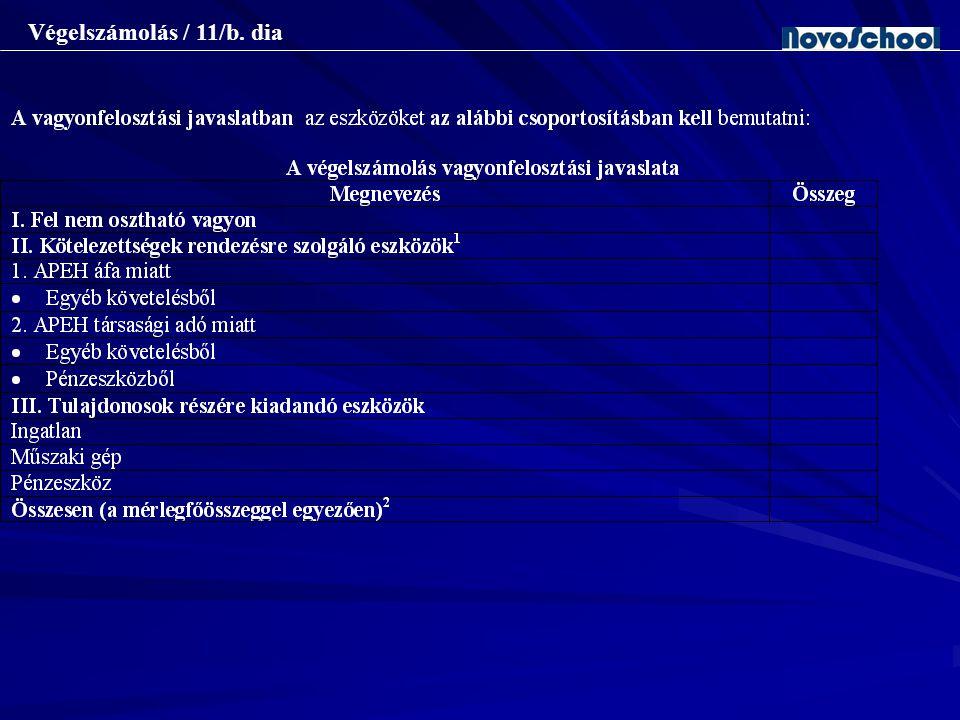 Végelszámolás / 11/b. dia Az átalakuló társaság vagyonmérleg-tervezete