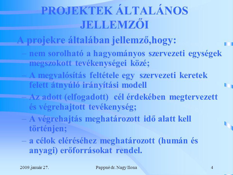 2009.január 27.Pappné dr.Nagy Ilona5 Magyar Nemzeti Könyvvizsgálati Standardok alkalmazása 4400.