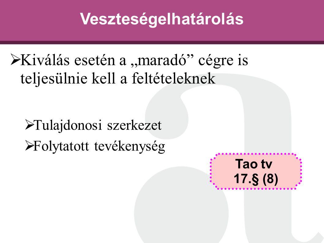 """Veszteségelhatárolás  Kiválás esetén a """"maradó"""" cégre is teljesülnie kell a feltételeknek  Tulajdonosi szerkezet  Folytatott tevékenység Tao tv 17."""