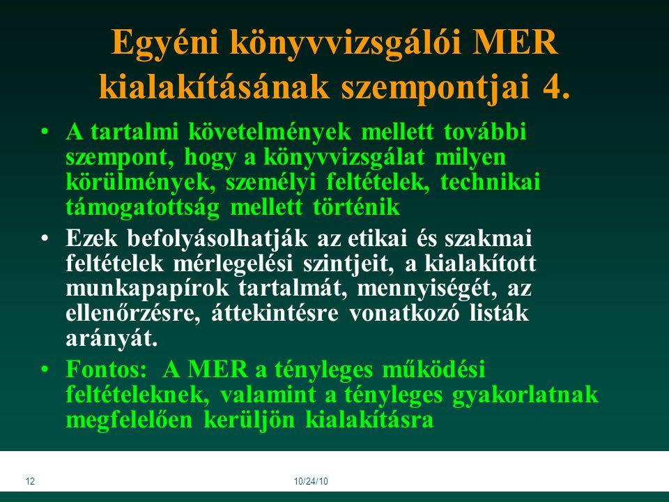 1210/24/10 Egyéni könyvvizsgálói MER kialakításának szempontjai 4.