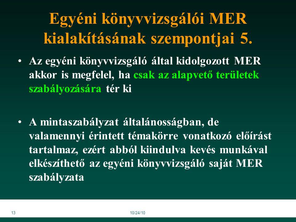 1310/24/10 Egyéni könyvvizsgálói MER kialakításának szempontjai 5.