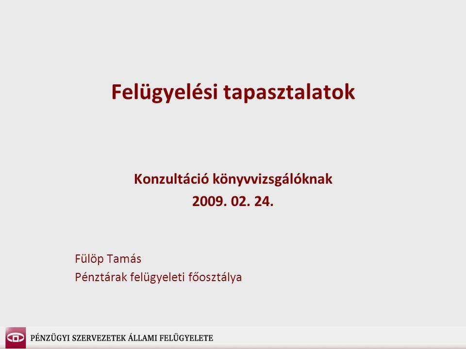 Felügyelési tapasztalatok Konzultáció könyvvizsgálóknak 2009.