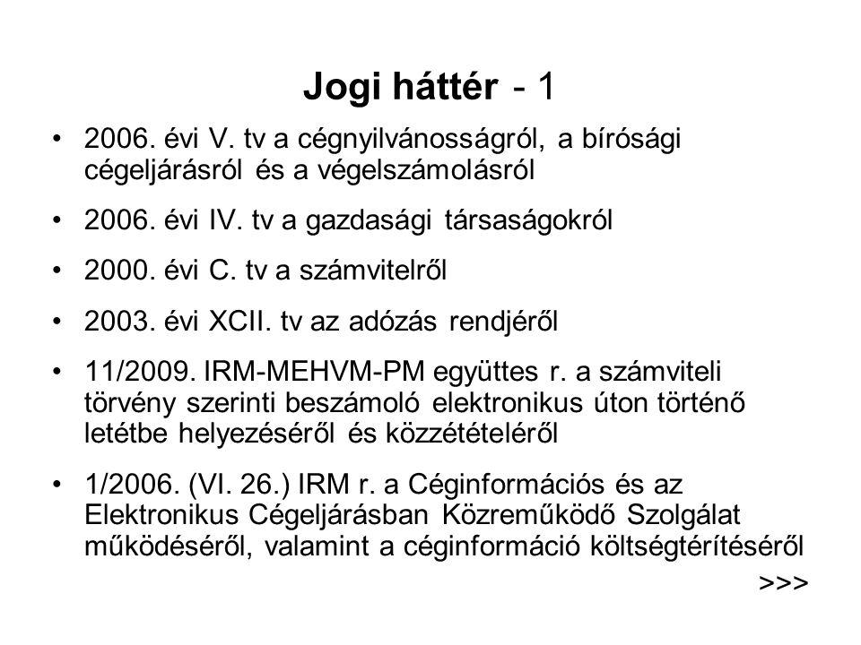 Beszámoló megőrzése 2006.évi V.