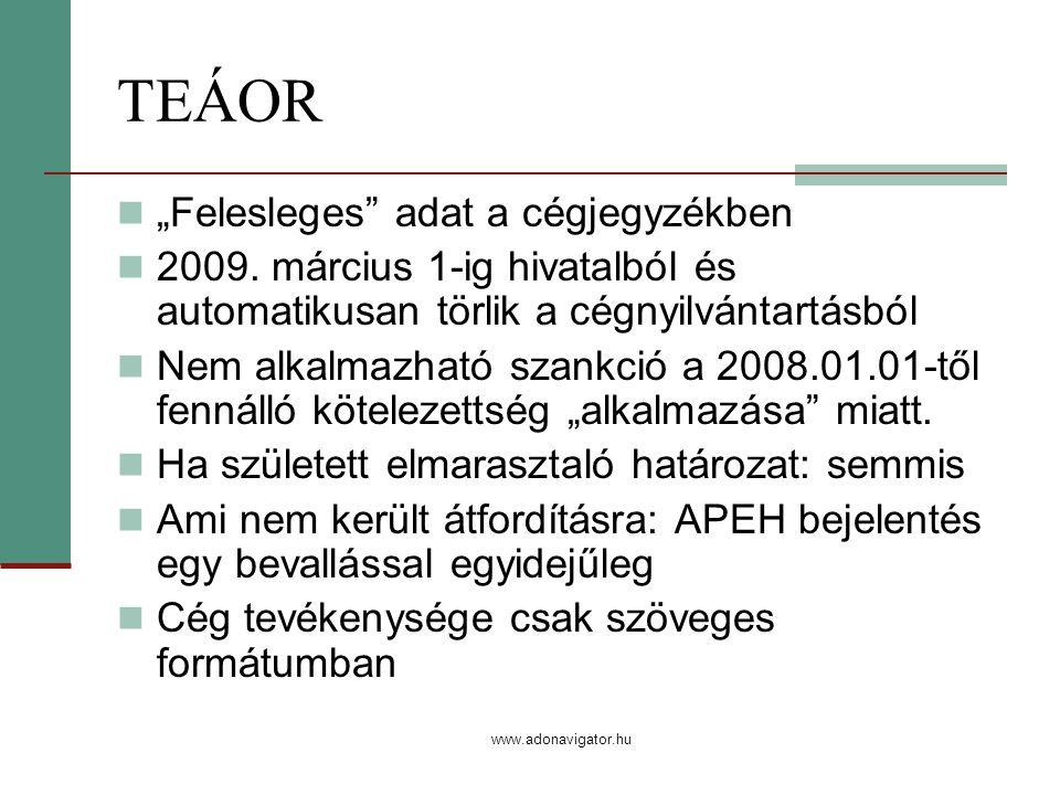 "www.adonavigator.hu TEÁOR ""Felesleges adat a cégjegyzékben 2009."