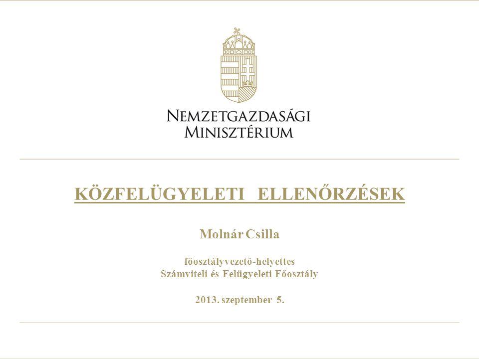 KÖZFELÜGYELETI ELLENŐRZÉSEK Molnár Csilla főosztályvezető-helyettes Számviteli és Felügyeleti Főosztály 2013. szeptember 5.