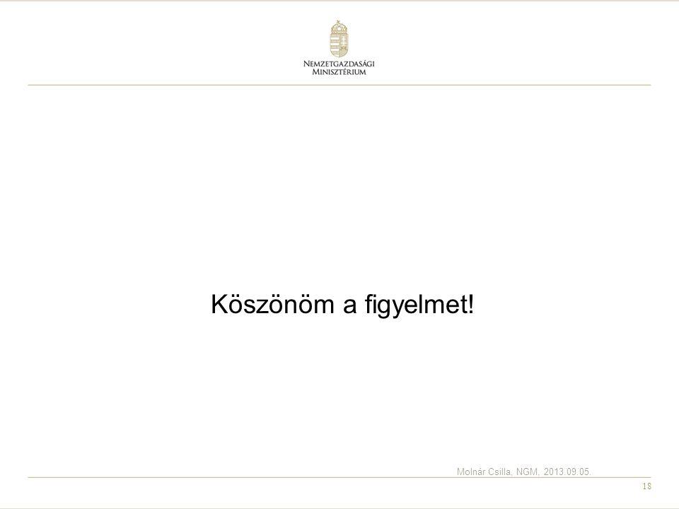 18 Köszönöm a figyelmet! Molnár Csilla, NGM, 2013.09.05.