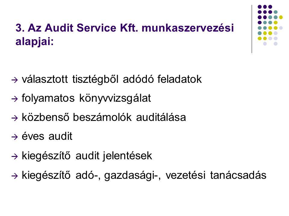 3. Az Audit Service Kft.