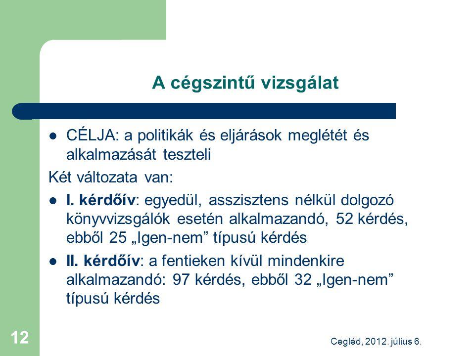 A cégszintű vizsgálat CÉLJA: a politikák és eljárások meglétét és alkalmazását teszteli Két változata van: I.