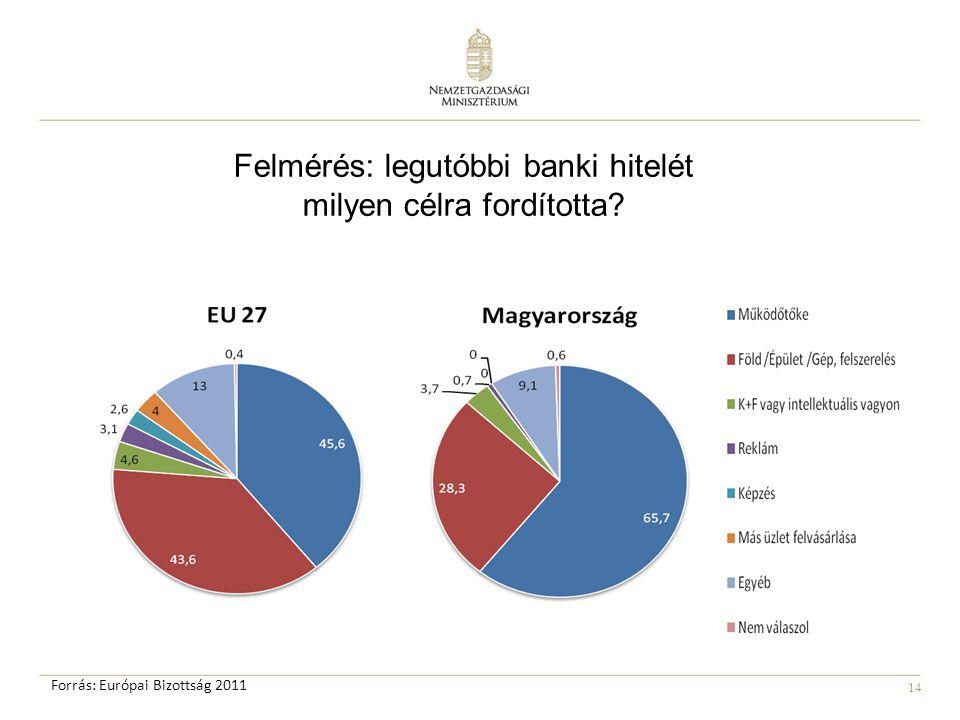 14 Felmérés: legutóbbi banki hitelét milyen célra fordította Forrás: Európai Bizottság 2011