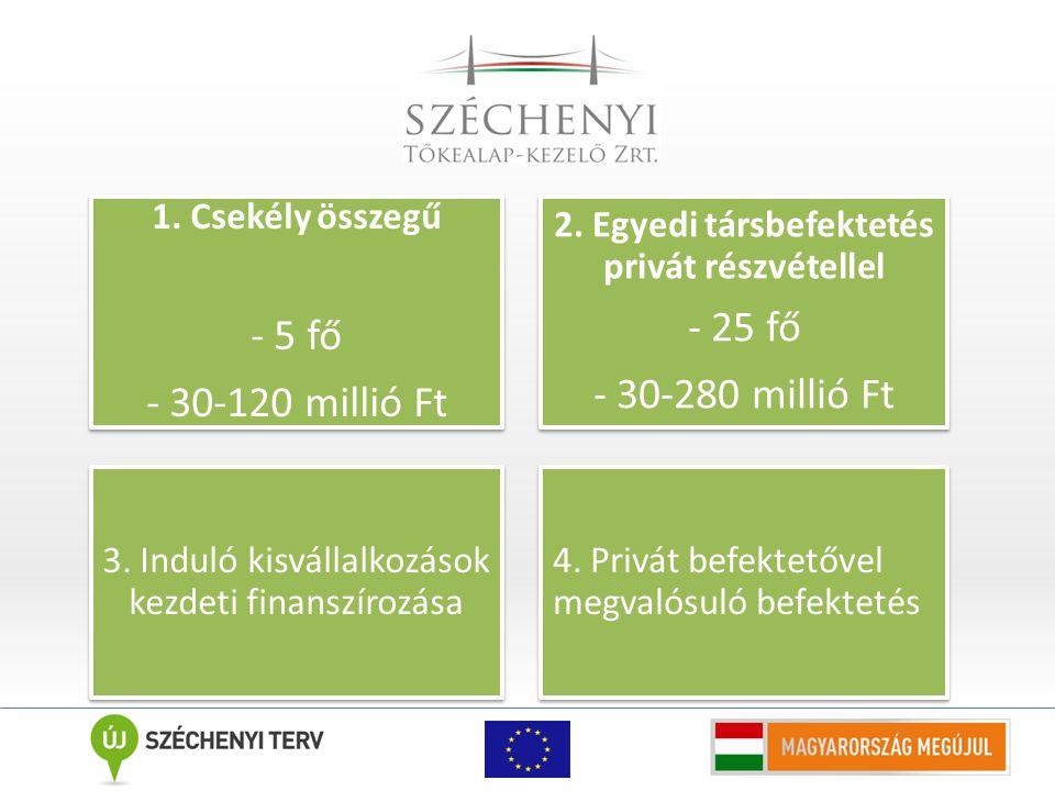 A Széchenyi Tőkebefektetési Alap működésének keretei 2 év alatt a legnagyobb számú portfóliót építette fel, Az Alapot a Széchenyi Tőkealap-kezelő Zrt.