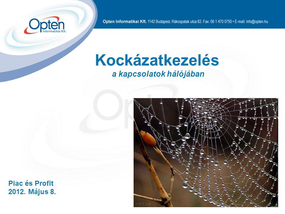 Piac és Profit 2012. Május 8. Kockázatkezelés a kapcsolatok hálójában