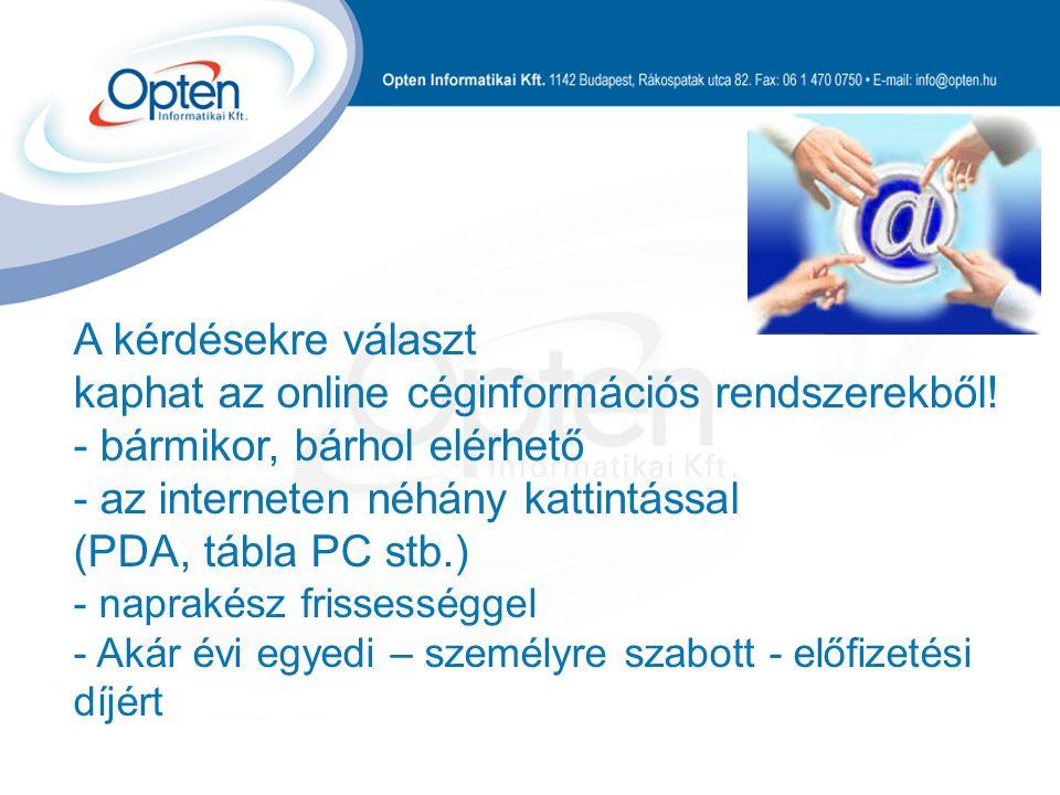 A kérdésekre választ kaphat az online céginformációs rendszerekből.
