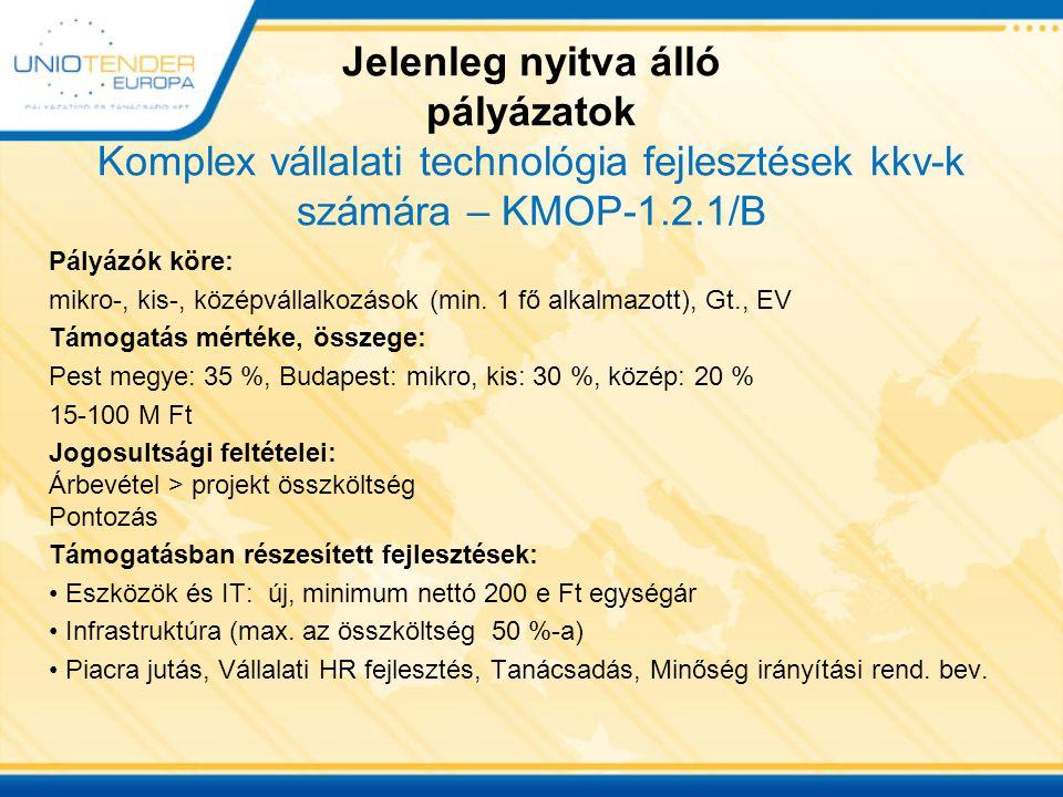 Esettanulmány KMOP-1.2.1/B Pályázó: Kisvállalkozás (28 fő alkalmazott) Személyi jellegű ráfordítások 2010-ben: 38 M Ft Árbevétel 2010-ben: 250 M Ft Beruházási igény: Csomagológép és fröccsöntőgép beszerzése 72 M Ft, raktár-és gyártócsarnok- felújítás/bővítés 50 M Ft, szám.tech.