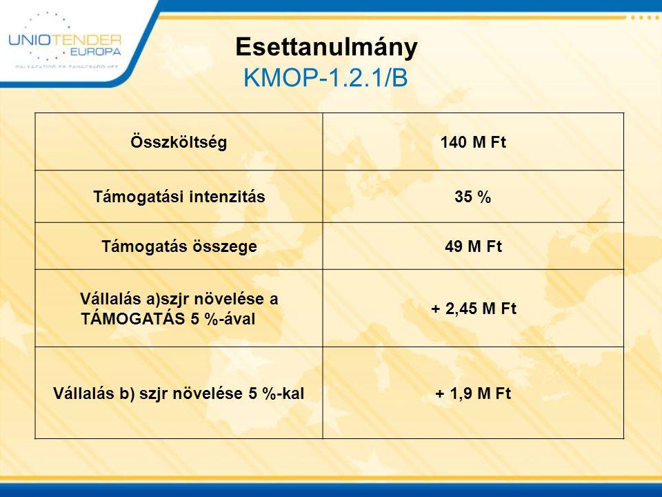 Esettanulmány KMOP-1.2.1/B Összköltség140 M Ft Támogatási intenzitás35 % Támogatás összege49 M Ft Vállalás a)szjr növelése a TÁMOGATÁS 5 %-ával + 2,45