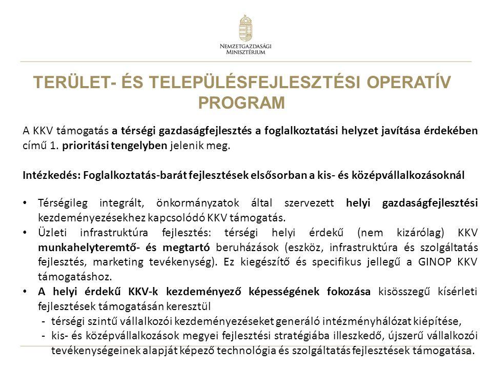 13 TERÜLET- ÉS TELEPÜLÉSFEJLESZTÉSI OPERATÍV PROGRAM A KKV támogatás a térségi gazdaságfejlesztés a foglalkoztatási helyzet javítása érdekében című 1.