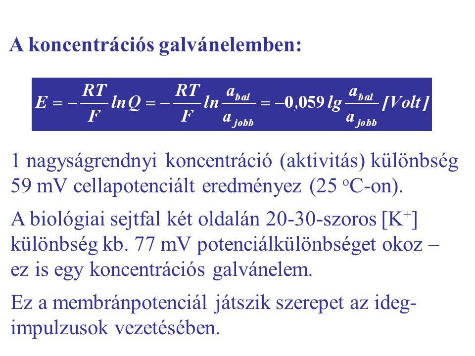 A koncentrációs galvánelemben: 1 nagyságrendnyi koncentráció (aktivitás) különbség 59 mV cellapotenciált eredményez (25 o C-on).