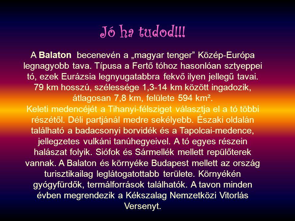 """A Balaton becenevén a """"magyar tenger"""" Közép-Európa legnagyobb tava. Típusa a Fertő tóhoz hasonlóan sztyeppei tó, ezek Eurázsia legnyugatabbra fekvő il"""