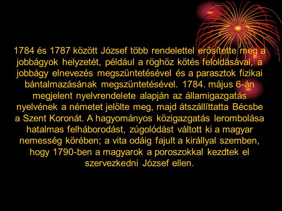 1784 és 1787 között József több rendelettel erősítette meg a jobbágyok helyzetét, például a röghöz kötés feloldásával, a jobbágy elnevezés megszünteté