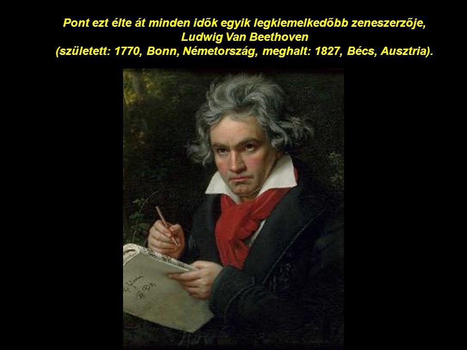 Pont ezt élte át minden idők egyik legkiemelkedőbb zeneszerzője, Ludwig Van Beethoven (született: 1770, Bonn, Németország, meghalt: 1827, Bécs, Ausztria).