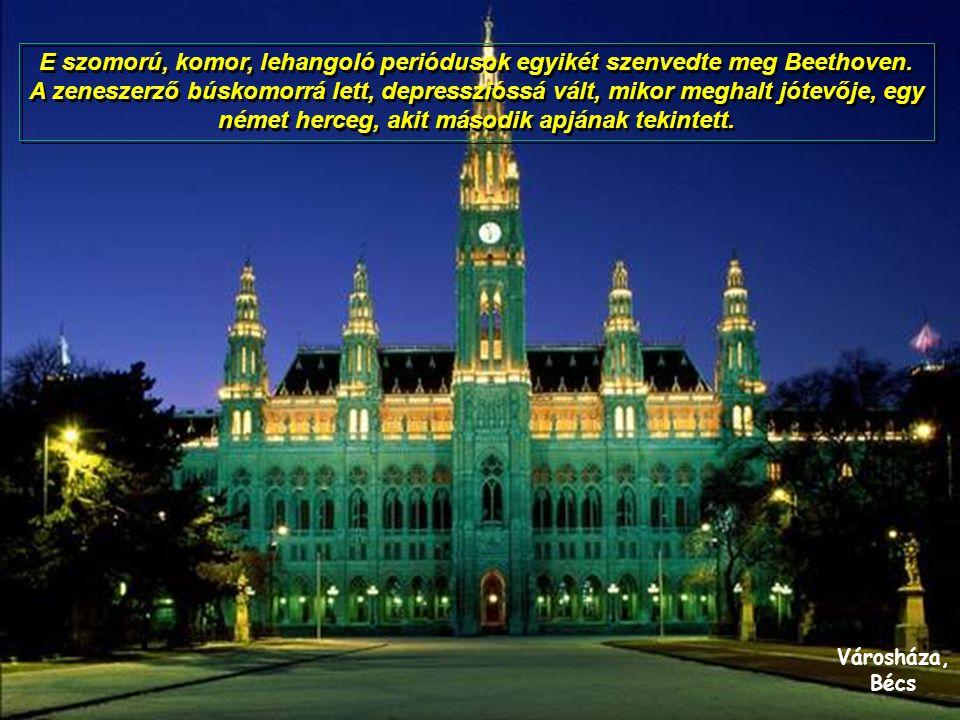 Városháza, Bécs E szomorú, komor, lehangoló periódusok egyikét szenvedte meg Beethoven.