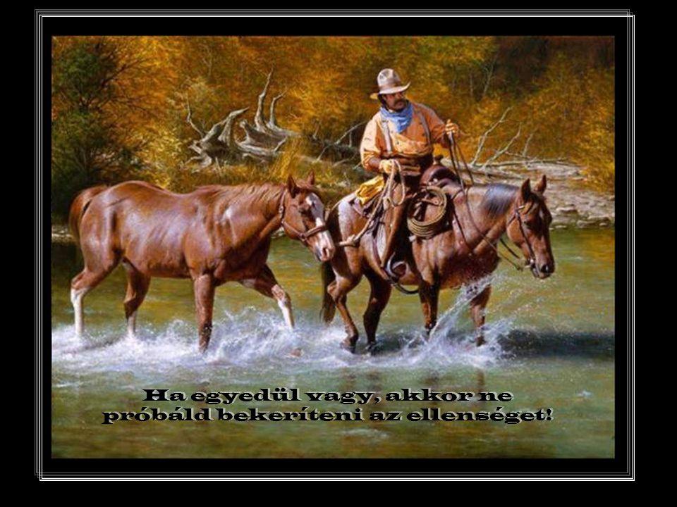 Mi ismerjük a jó utat! Csak el ő bb meg kell építenünk. A döglött dakota ló sohasem botlik.