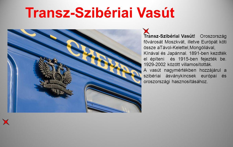 A Moszkvát Vlagyivosztokkal összekötő 9289 km-es Transz-Szibériai Vasút a világ leghosszabb vasútvonala.Eredetileg II.Miklós orosz cár építtette ezért