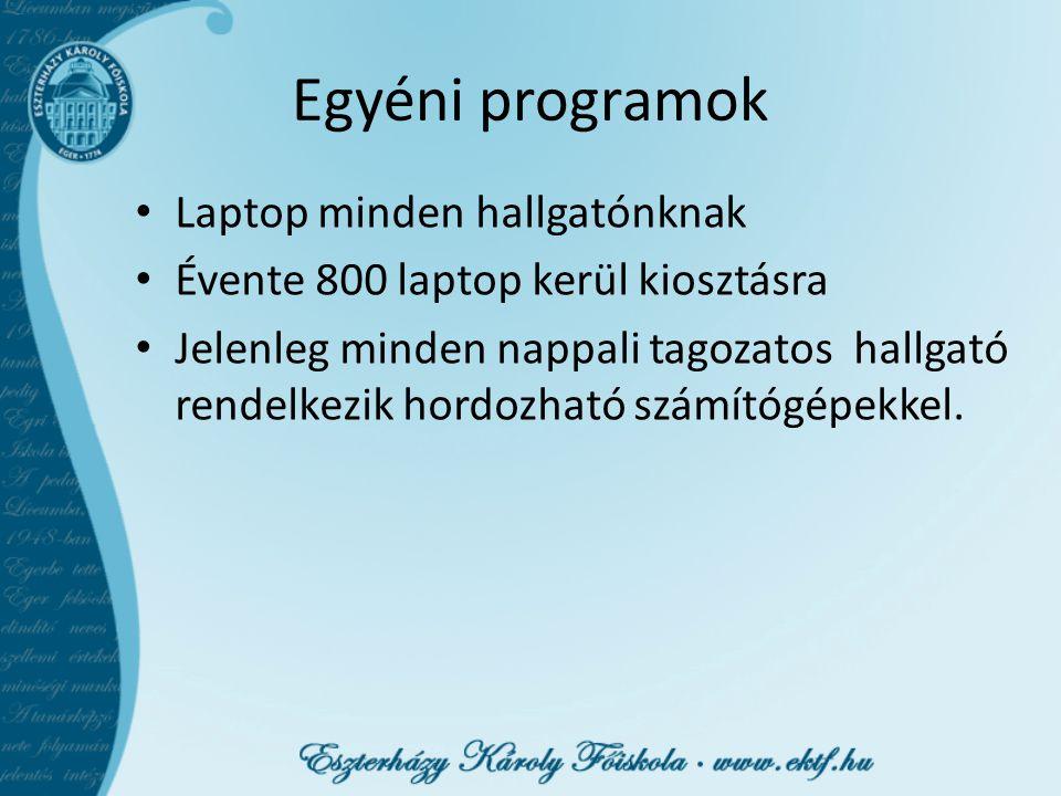 Egyéni programok