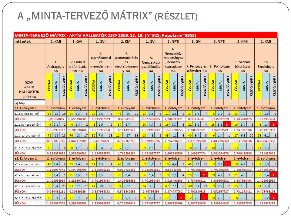"""A """"MINTA-TERVEZŐ MÁTRIX (RÉSZLET)"""