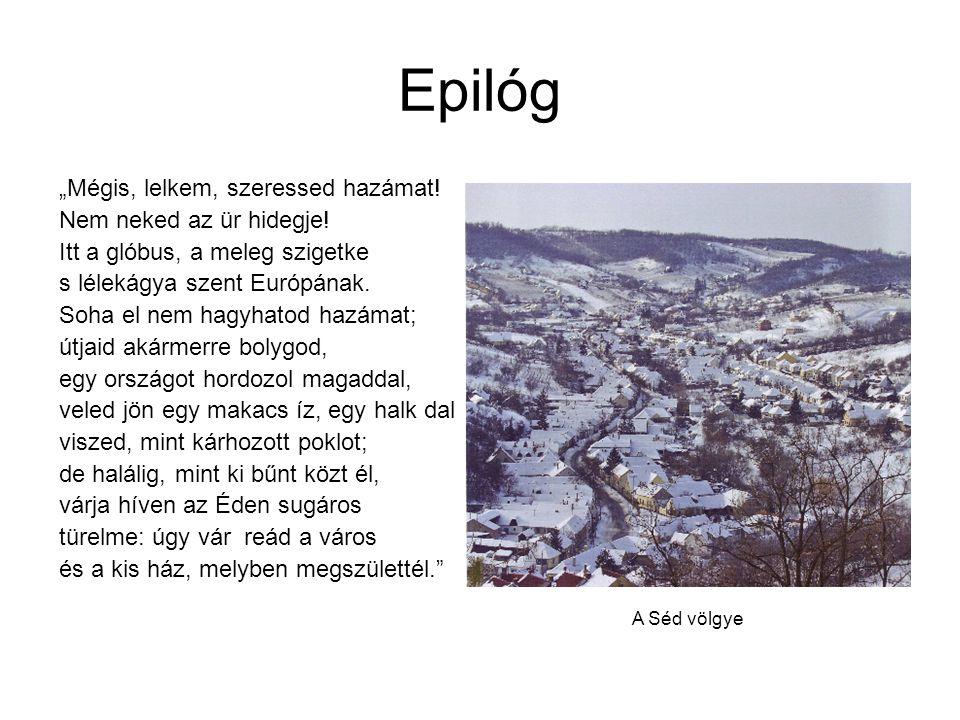 """Epilóg """"Mégis, lelkem, szeressed hazámat! Nem neked az ür hidegje! Itt a glóbus, a meleg szigetke s lélekágya szent Európának. Soha el nem hagyhatod h"""