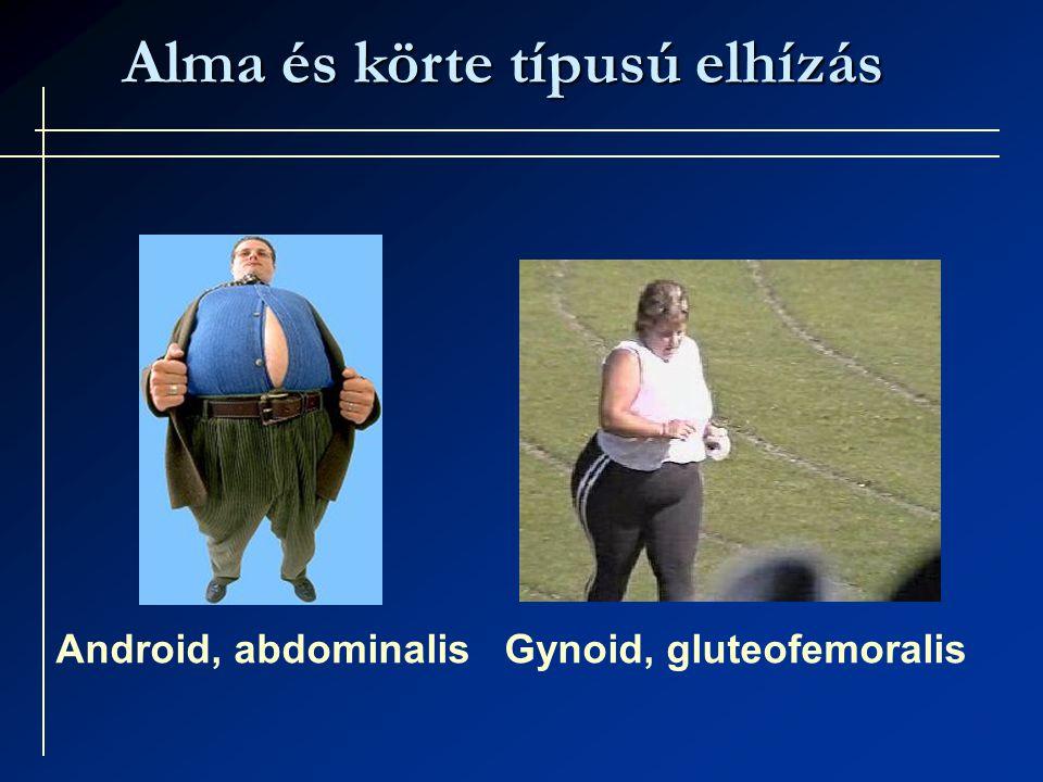 Alma és körte típusú elhízás Android, abdominalis Gynoid, gluteofemoralis